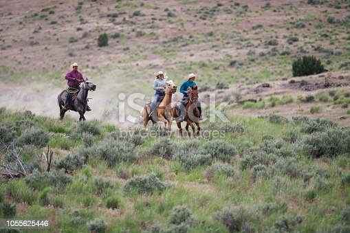 Cowboys and cowgirls riding beautiful horses on the ranch and in nature