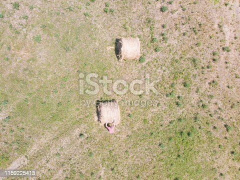 Photo is taken with camera attached to a flying drone outdoors on sunny day in summer