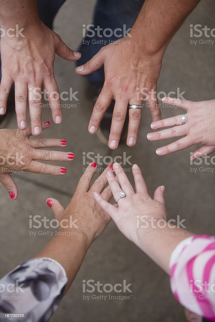 adult hands royalty-free stock photo