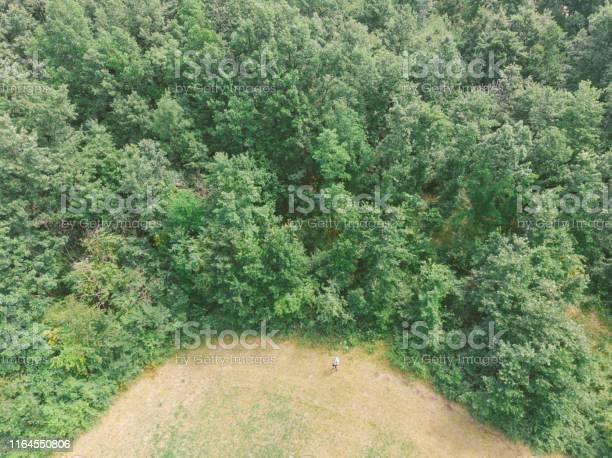 Photo of Adult man hiker hiking next to deciduous green tree forest on summer day. Aerial view.