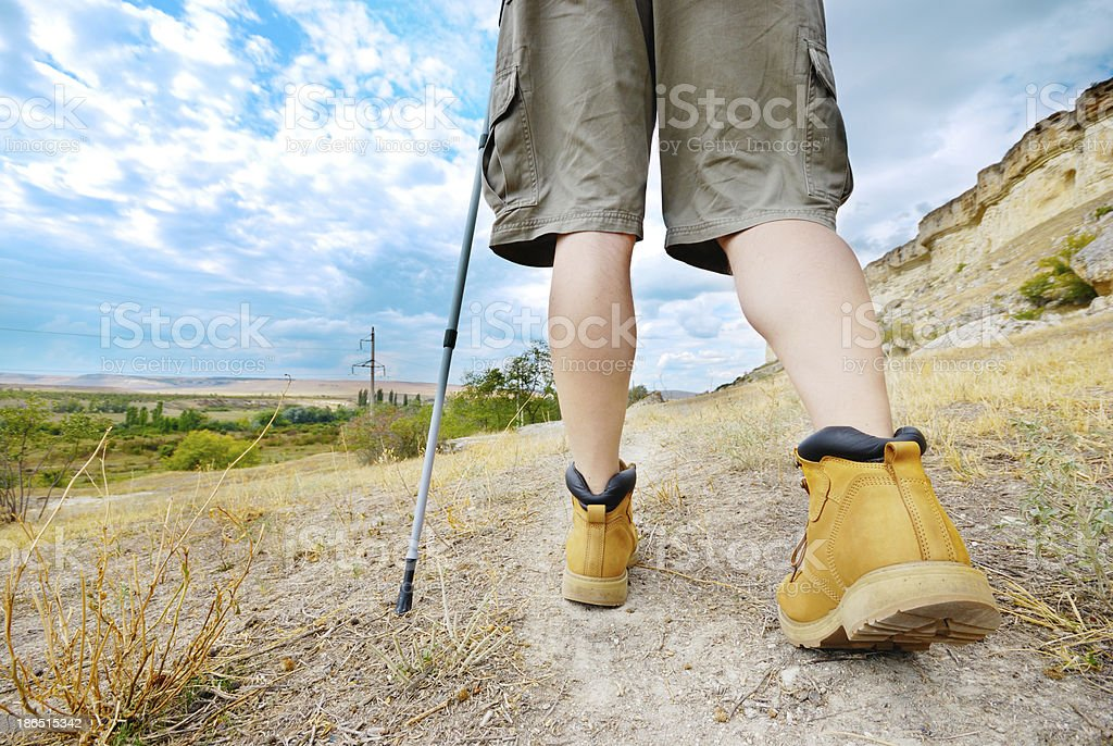 Adult man is hiking with trekking poles royalty-free stock photo