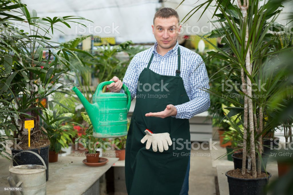Adult man is taking care of blooming flowers and watered them on his work place stock photo