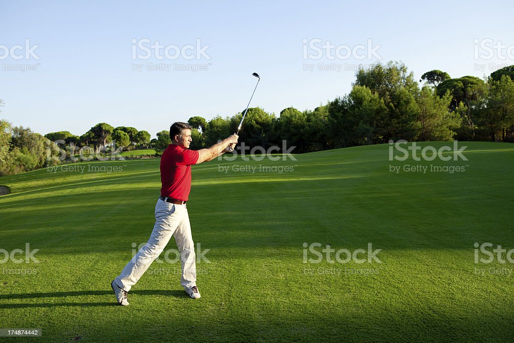 Adult man playing golf royalty-free stock photo