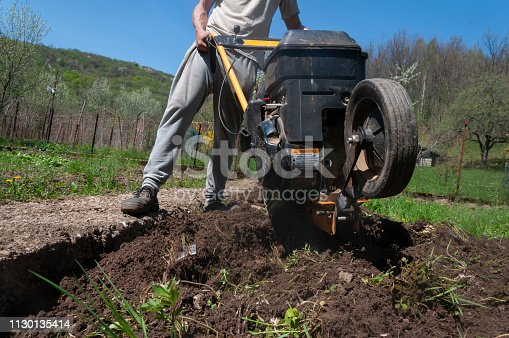 Adult Man Turning Soil in Vegetable Garden With Rotary Hoe.