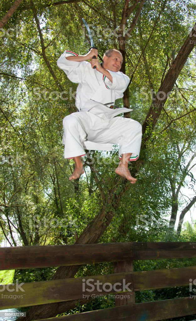Adult men practicing Karate outdoor royalty-free 스톡 사진