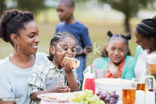 1091098220istockphoto Adult sisters and their children eating at cookout 984463086