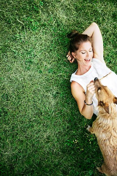 adult woman enjoying time with pet dog - yatmak stok fotoğraflar ve resimler