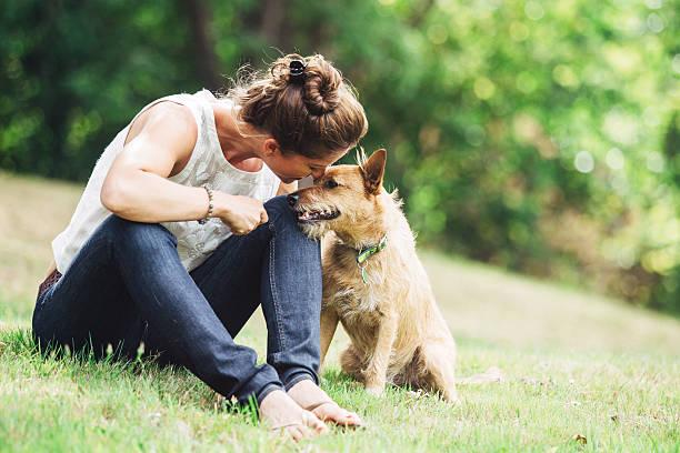 大人の女性の時間、ペットの犬をお楽しみいただけます。 - ペット ストックフォトと画像