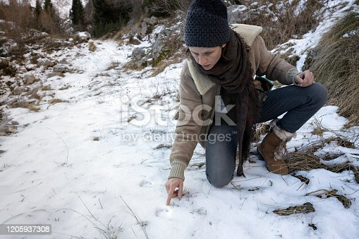 Adult Woman Finding Animal Footprints in Snow in Wilderness.