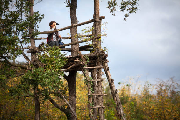 Adult Woman Sitting on Tree Stand and Bird Watching With Binoculars Adult Woman Sitting on Tree Stand and Bird Watching With Binoculars. hunting blind stock pictures, royalty-free photos & images