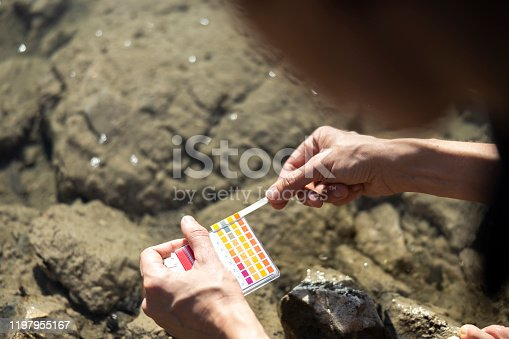 Adult Woman Using Litmus Test To Measure pH Value of Water in Nature.