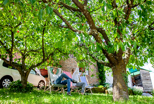 Adult Women Relaxing in Backyard and Picking Cherries