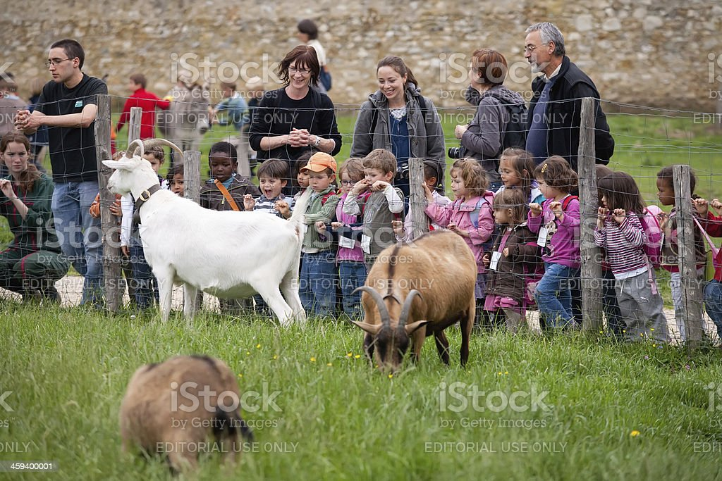 Adults and children look at animals on the farm Marii-Antuanetty royalty-free stock photo