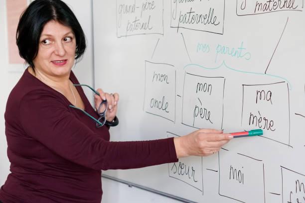 adultos aprendendo uma língua francesa - aula de idioma - fotografias e filmes do acervo