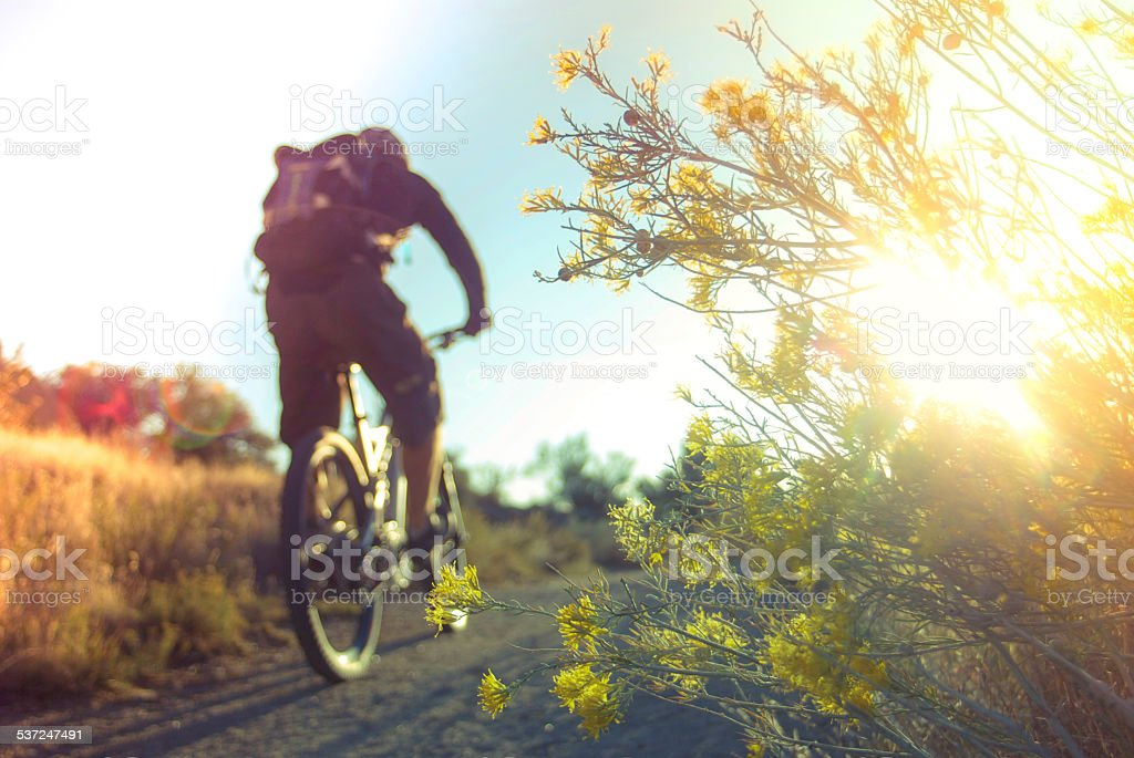 adventure and sports in the environment stock photo