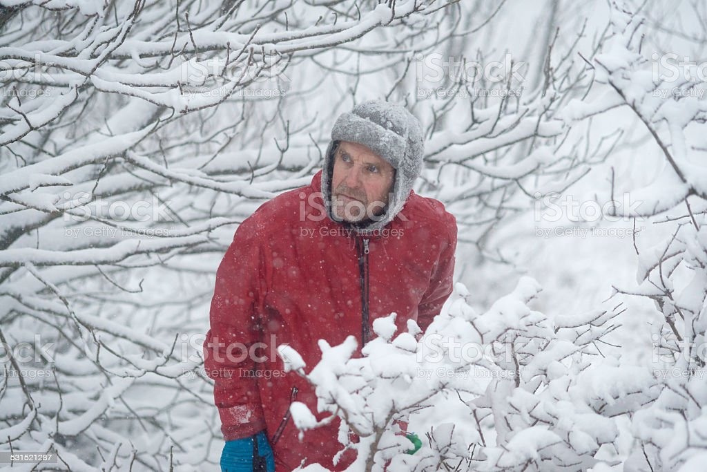 Adventure Mauntain Senior Man Hiking, Snowing, Julian Alps, Europe stock photo