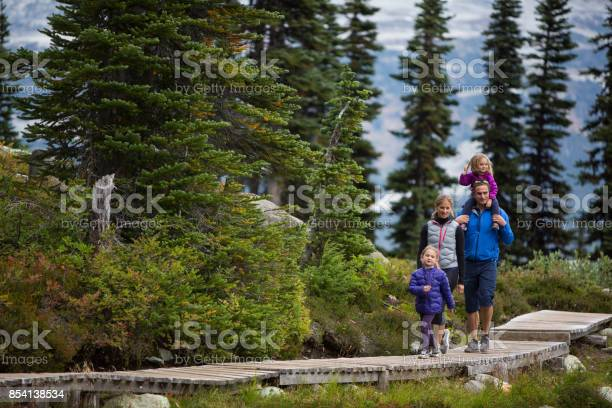 Photo of Adventure walk in the forest