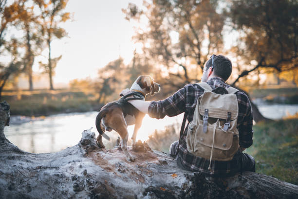 Adventures by the river - fotografia de stock