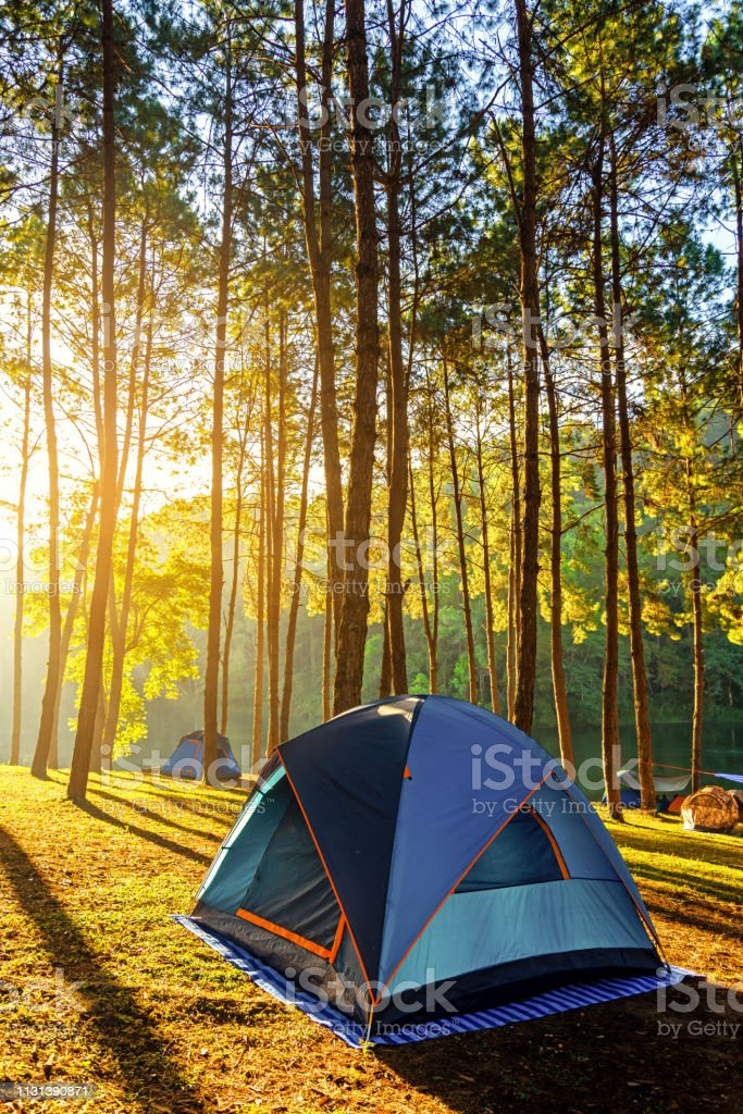 Adventures Camping and tent under the pine forest near water outdoor in morning and sunset at Pang-ung, pine forest park , Mae Hong Son, - Royalty-free Acampar Foto de stock
