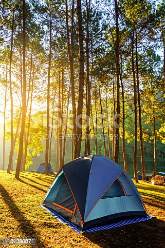 Adventures Camping and tent under the pine forest near water outdoor in morning and sunset at Pang-ung, pine forest park , Mae Hong Son, North of Thailand, forest background.