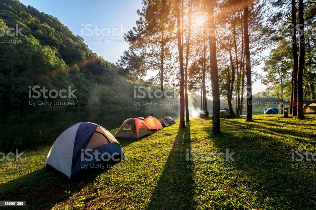 Adventures Camping and tent under the pine forest near water outdoor in morning and sunset at Pang-ung, pine forest park , - Royalty-free Acampar Foto de stock