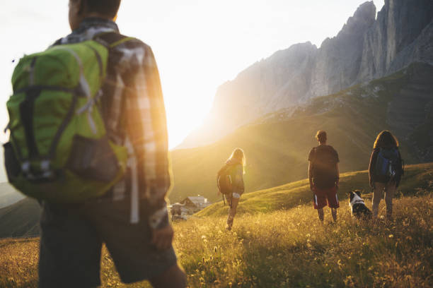 Adventures on the Dolomites: teenagers hiking with dog Adventures on the Dolomites: teenagers hiking trentino alto adige stock pictures, royalty-free photos & images