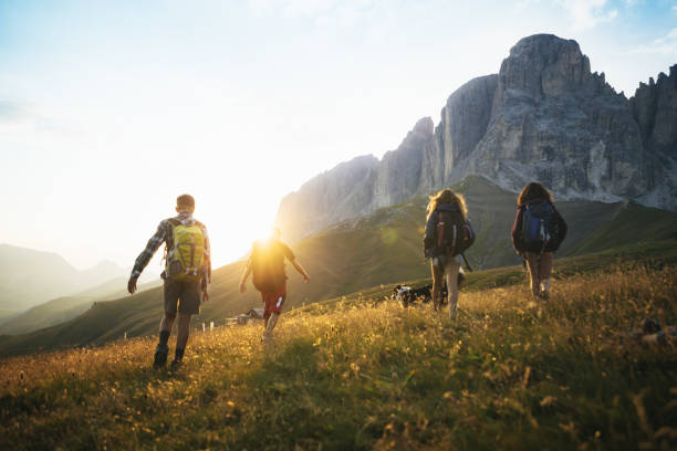 adventures on the dolomites: teenagers hiking with dog - saccopelista foto e immagini stock