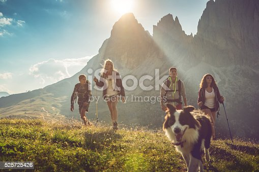 istock Adventures on the Dolomites with dog 525725426