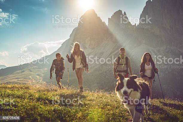 Adventures on the dolomites with dog picture id525725426?b=1&k=6&m=525725426&s=612x612&h=kk dvcdke0kyxeskl7cjobexo9sczvug1ezg8kfmkk8=