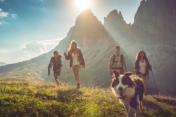 abenteuer in den dolomiten mit hund - italienische lebensart stock-fotos und bilder