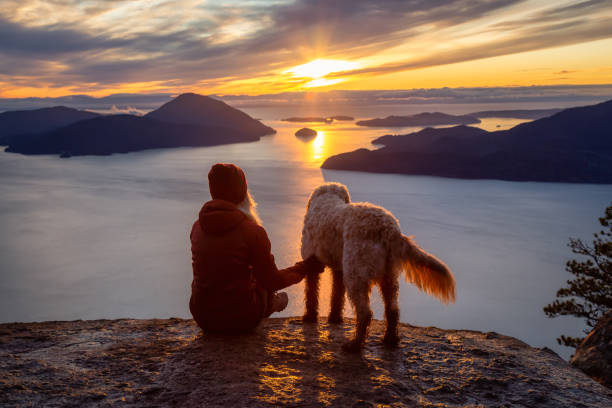 Adventurous Girl Hiking on top of a Mountain with a dog
