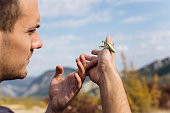 Young male biologist exploring mountain nature, and collects data about insects-mantis while holding mantis and admiring his beauty
