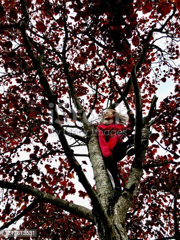 Happy and contented young girl in red coat climbing red leaved tree