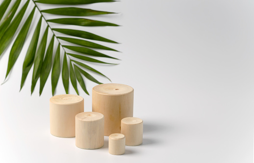 Advertising stand for cosmetic products. Exhibition wooden podium with geometric shapes on a white background with palm leaves. Empty plinth to showcase product packaging. Layout