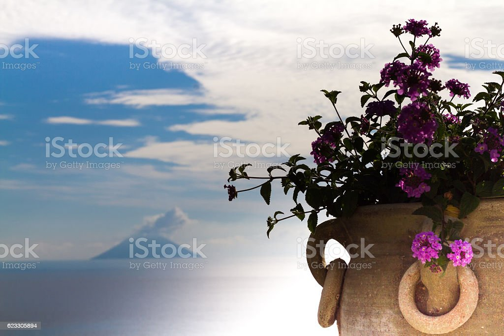 Aeolian Islands Seascape: Smoking Volcanic Stromboli, Flowers Foreground stock photo