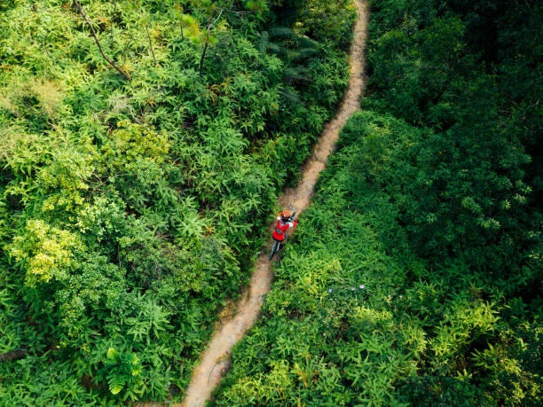Aerail view of cross country biking woman cyclist with mountain bike walking on tropical rainforest trail Aerail view of cross country biking woman cyclist with mountain bike walking on tropical rainforest trail mountain biking stock pictures, royalty-free photos & images