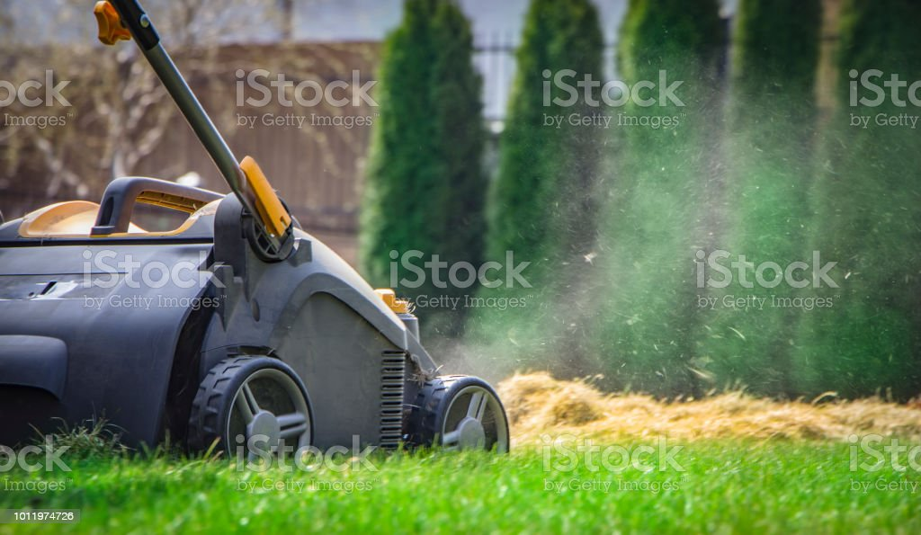 Aeration of the lawn in the garden. Yellow aerator on green grass stock photo