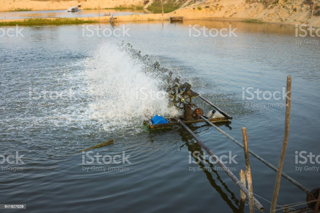 Aerator turbines on Shrimp ponds, to fill oxygen into water stock photo