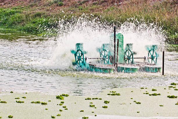 aerators - rudermaschine stock-fotos und bilder