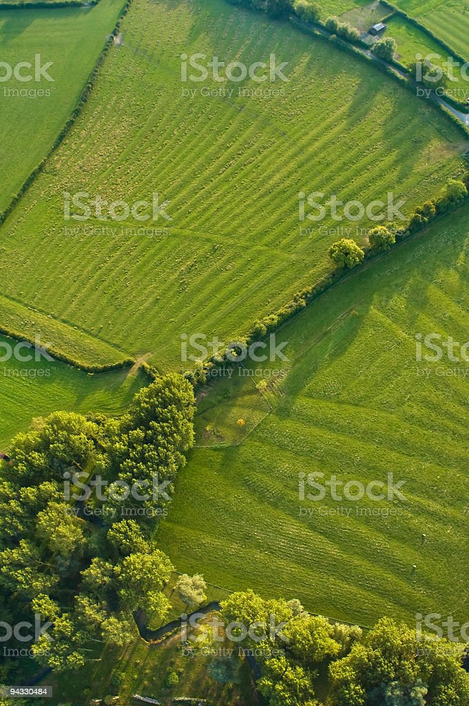 Aerial abstract, woodland and pasture stock photo