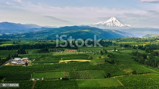 Aerial shot of agricultural land with Mount Hood seen in distance with its snowcapped peak in Oregon, USA.