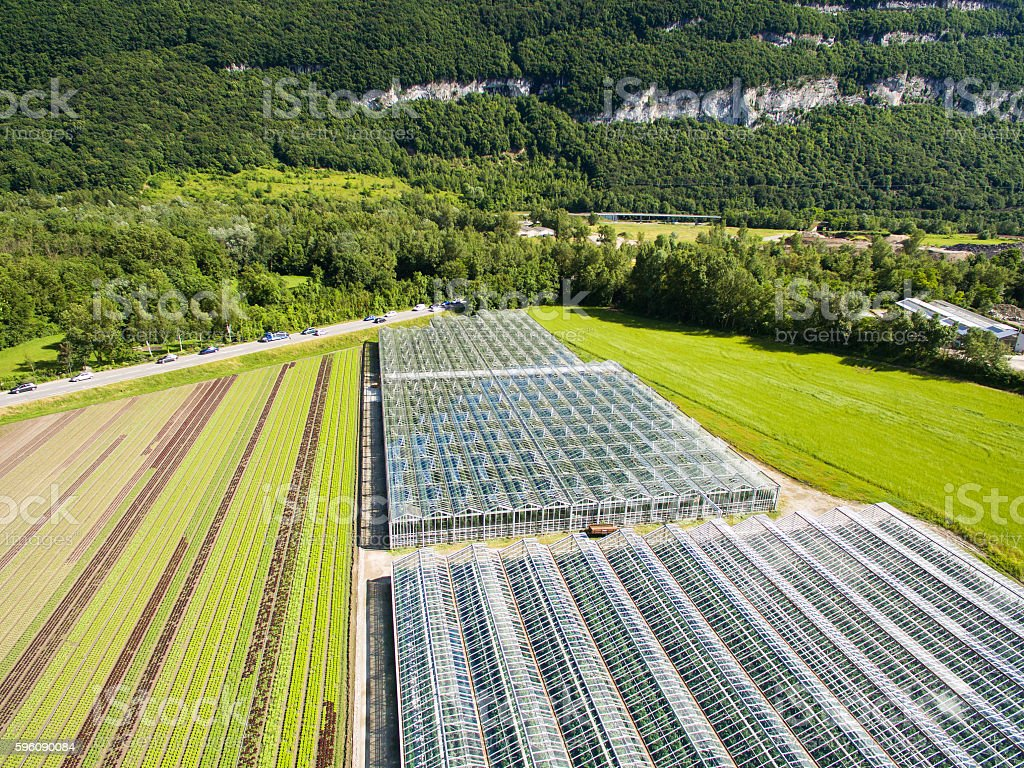 Aerial agricultural view of lettuce production field and greenho royalty-free stock photo