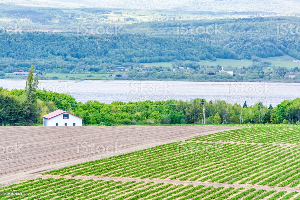 Aerial cityscape landscape view of farmland in Ile D'Orleans, Quebec, Canada, plowed field, furrows, land, farm, house, barn, shed, Saint Lawrence river, hills, mountains and village stock photo