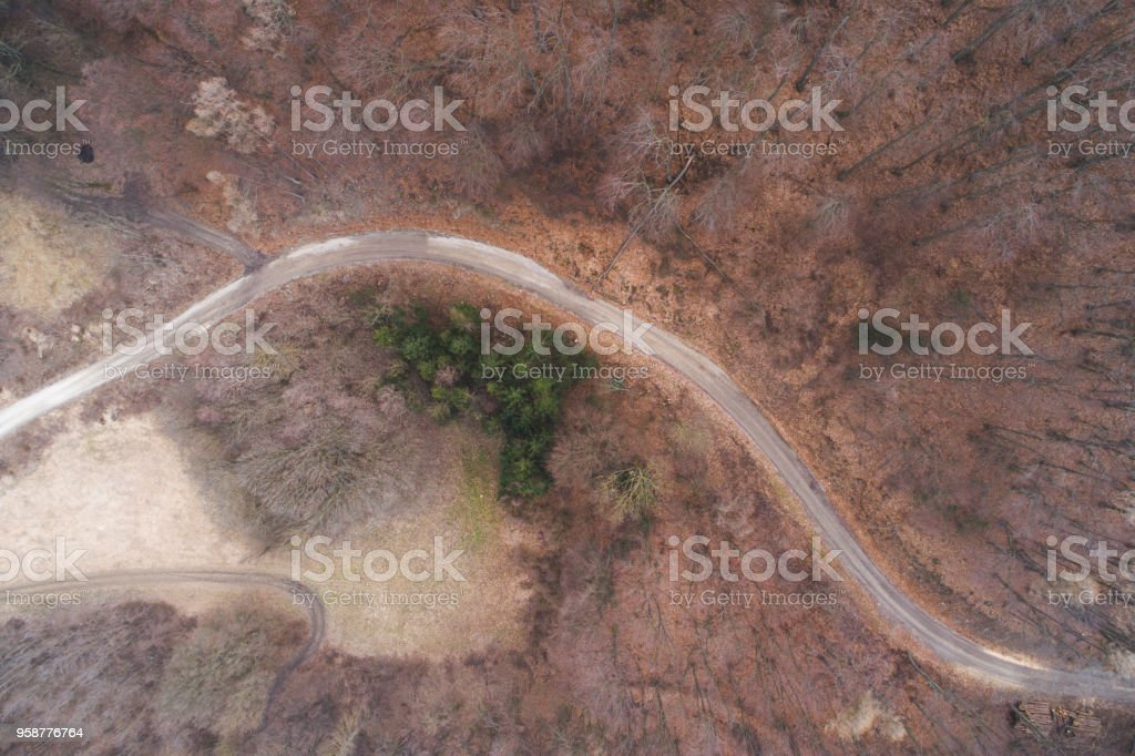 aerial Drone flight over forest and dirt road in a forest in lower...