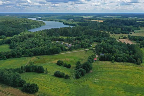 aerial drone perspektivvy på vackert landsbygdslandskap med gult vetefält, grön majsfält, gröna ängar, skog, sjö och by. - single pampas grass bildbanksfoton och bilder