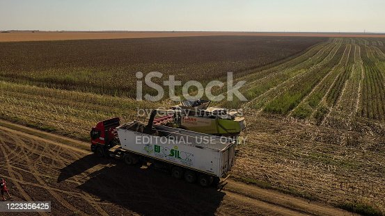 GIURGIU, ROMANIA - APRIL 27, 2020: Aerial drone photograph showing industrial machine harvesting sunflower crops. Severe drought conditions affecting the crop fields.