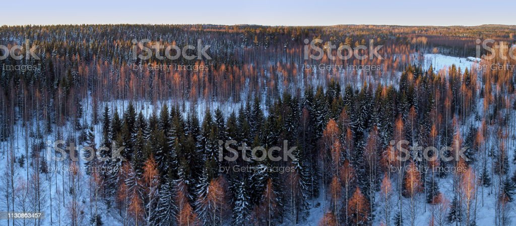Aerial drone view of a winter landscape stock photo