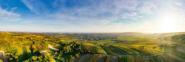 Aerial drone view of colorful vineyards fields in the Austrian Weinviertel region stock photo