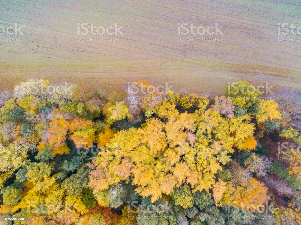 Aerial drone view of cultivated land a and forest in Germany during...