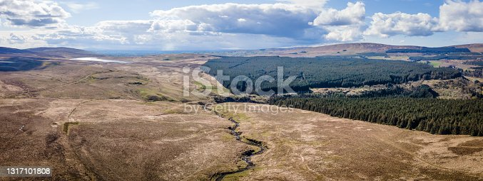 istock Aerial drone view of landscape scenery at Glenariffe, County Antrim, Northern Ireland 1317101808